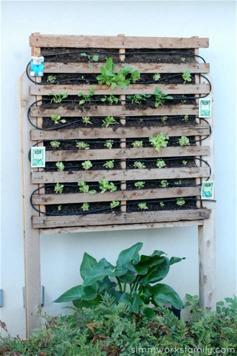 How To Build A Vertical Pallet Garden by How To Build A Vertical Garden Using Pallets