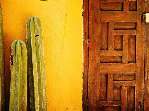 cactus wallpapers wallpaper cave