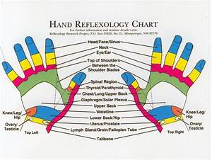 Reflexology Products  Hand Reflexology Charts Personalized
