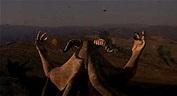 Articles of Destroyer: Megiddo: The Omega Code 2 Review