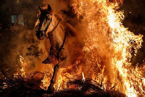 horses  ridden  fire  honour patron saint