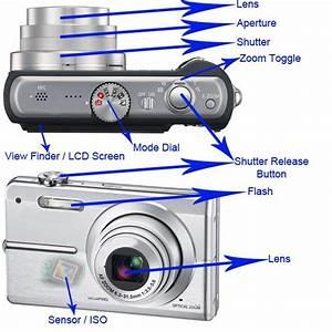 Point  U0026 Shoot Digital Camera Parts Diagram