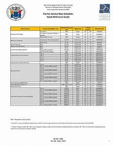 Ddd U0026 39 S Supports Program Manual Draft