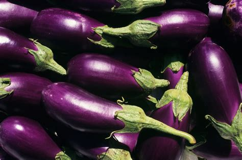 aubergine cuisine eggplant dip recipe sbs food