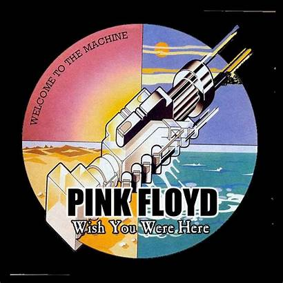 Floyd Wish Were Pink Album Covers Pinkfloyd