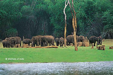 Complete list of all Wildlife Sanctuaries of Kerala, India
