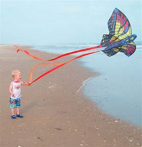 17 Best Images About WINDS A39 Blowin39 Flying Kites On