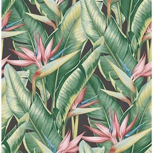 Kenneth James Arcadia Pink Banana Leaf Wallpaper Sample