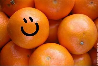 Orange Things Oranges Son Cosas Naranja Que
