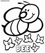 Bee Coloring Colorings Animal sketch template