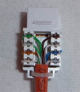 Cat6 Jack Wiring Diagram