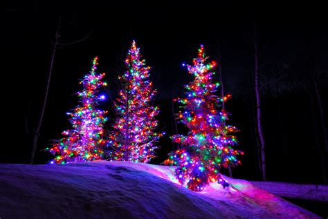 how to do christmas lights on trees led light design gorgeous christmas tree lights led decor