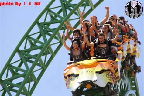 what time does busch gardens open the thrills cheetah hunt officially opens up to