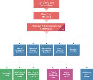 Hospital Governance Structure