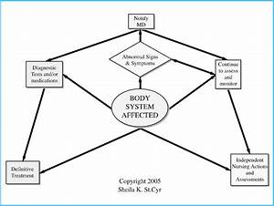 Body System Concept Map