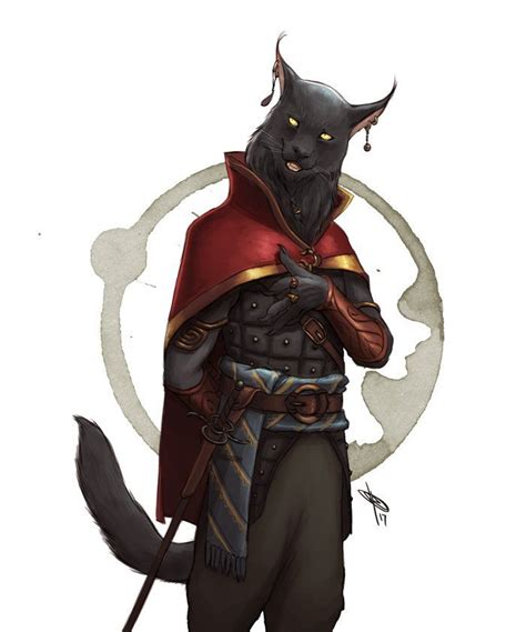 image result for tabaxi characters pinterest rpg