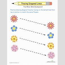Match The Flowers Trace The Diagonal Lines  Worksheet Educationcom