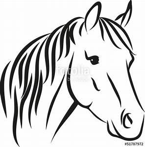 Pferdekopf Schwarz Weiß : horse with long mane stockfotos und lizenzfreie vektoren auf bild 51787972 ~ Watch28wear.com Haus und Dekorationen