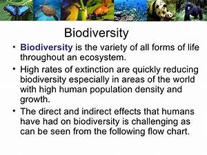 Ecosystems 5 Biodiversity And Humans
