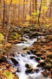 Great Smoky Mountains Autumn