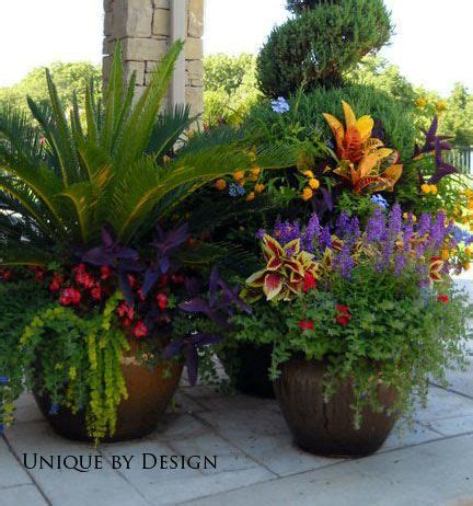 potted plants ideas 35 beautiful container gardens container gardening plants and gardens