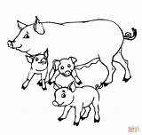Coloring Pigs Pig Drawing Mother Outline Piglet Mom Getcoloringpages Printable Super Cartoon Pigeon Colouring Getdrawings Adults Supercoloring Peppa Adorable Paper sketch template