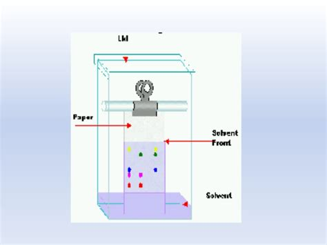 Chromatography Paper Presentation On Principle Of Paper Chromatography And Rf Value