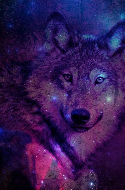 Galaxy Wolf Wallpaper Hd by 46 Galaxy Wolf Wallpaper On Wallpapersafari