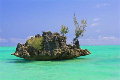 cuisine mauricienne ile maurice paysage arts et voyages