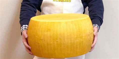 costcos  pound parmesan cheese wheel   night