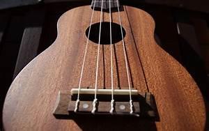 Best Ukulele Strings - A Complete Guide