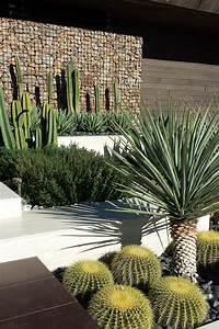 Outdoor Cactus Garden Ideas For The Best Looking Landscape