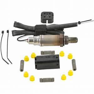 Bosch O2 Sensor Wiring Diagram