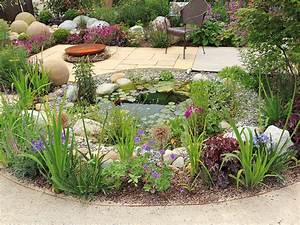 How to design and build a wildlife pond - Saga