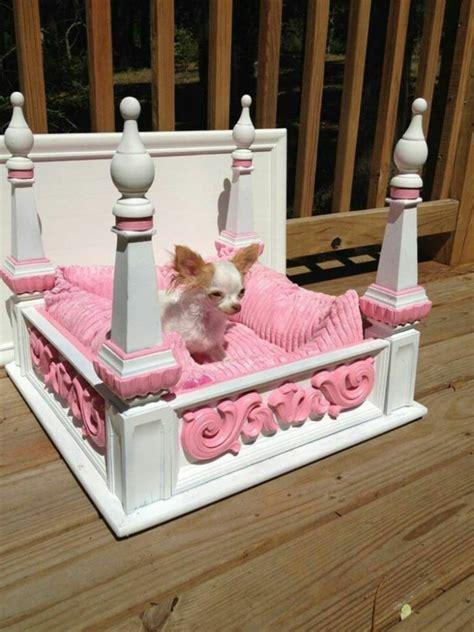 canapé pour chiens le lit pour chien nécessaire et amusant