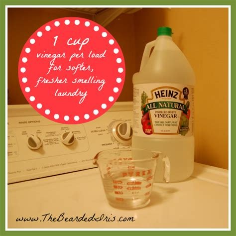 adding vinegar to wash i put white vinegar in my washing machine and you should too 187 the bearded iris