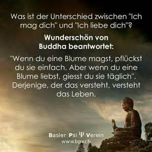 achtsamkeit sprüche 1000 ideen zu buddha zitate auf