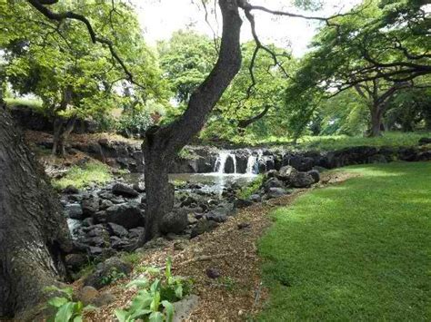 foster botanical garden foster botanical garden an paradise in the