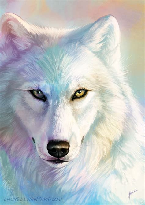1000 ideas about how to draw wolf on werewolves anime wolf and wolf