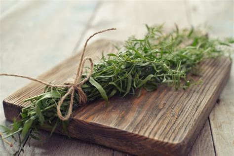 rosemary substitute what s a good rosemary substitute spiceography