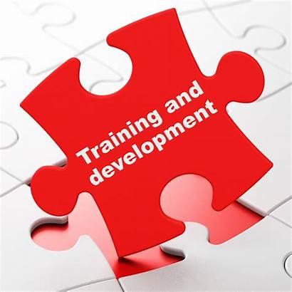 Training Customer Development Puzzle Satisfaction Background Shutterstock