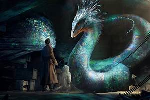 Fantastic Beasts and Where to Find Them: Art from the film