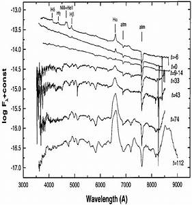 Wiring Diagram 1998s 10