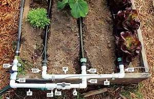How To Build A Drip Irrigation System - Diy