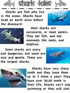 8 Best Images About Shark Week On Pinterest