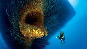 Open Mouth - Wreck of USS The Saratoga