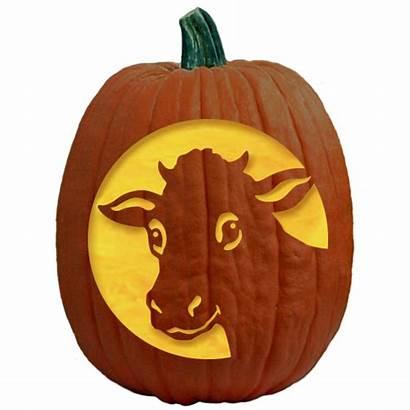 Pumpkin Carving Stencils Patterns Bessie Pattern Cow