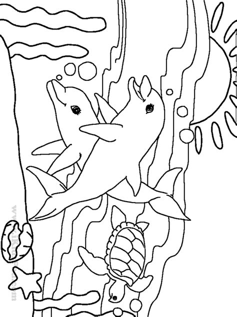 cute sea animal coloring pages