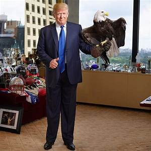 Donald Trump Gets Attacked By Bald Eagle Named Uncle Sam ...