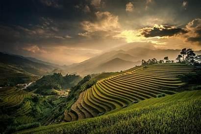 Bali Indonesia Rice Landscape Nature Sunset Field